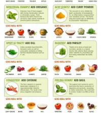 Herbal Plants That You Should Know About Infographic