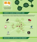 All you need to know how memory works infographic