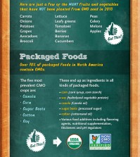 Avoid GMO Foods At The Grocery Store Infographic