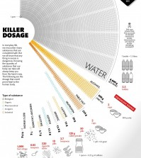 The dosages of everyday substances that are proven to be lethal to the human body infographic