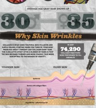 The science of getting old and everything that you should know about it infographic