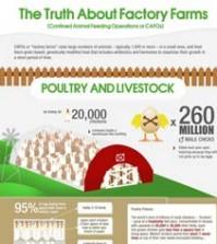 factory farm dangers