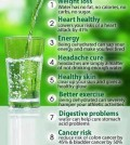 Reasons why you should drink more water