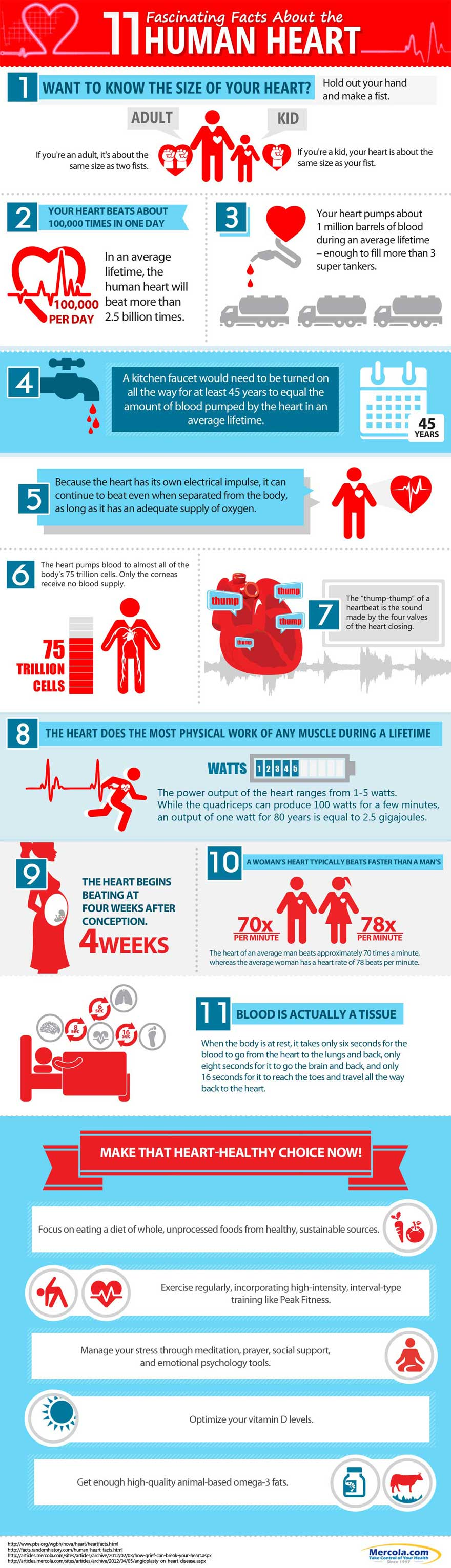 11 Things You Probably Didn't Know About Your Heart