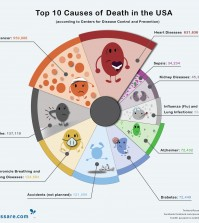 Are You at Risk? Top 10 Causes of Deaths in the USA