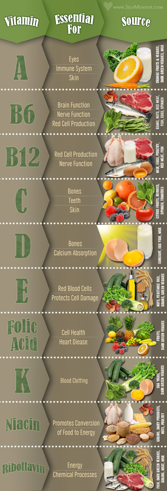 10 Vitamins Info-table Infographic
