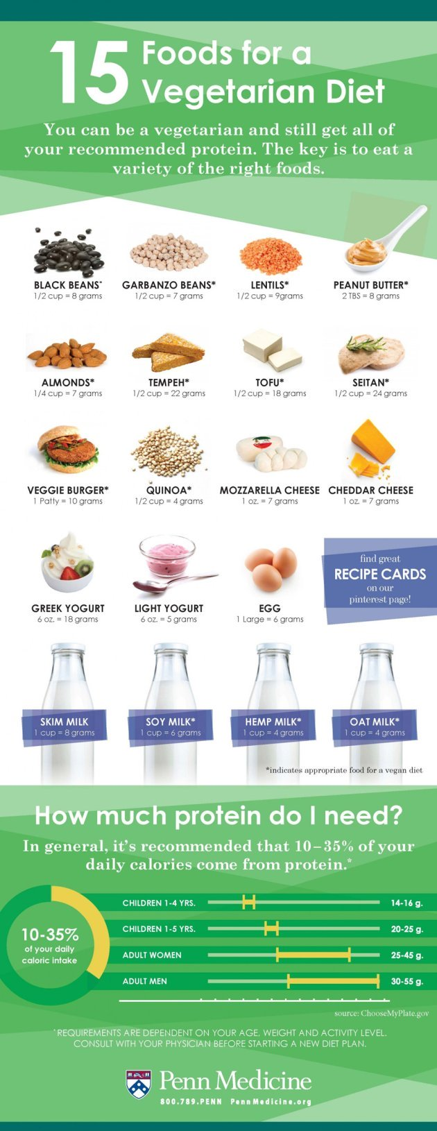 15 Foods For Vegetarians Infographic
