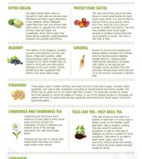 9 Healing Herbs For Diabetes Infographic