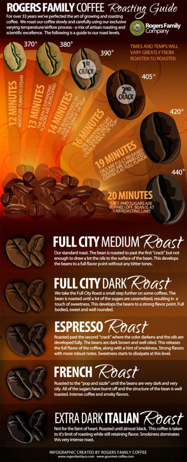 Coffee Roasting Guide Infographic