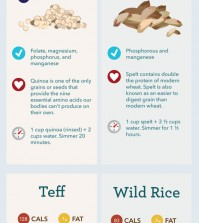 15 Healthy Grains Infographic