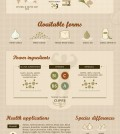 All Benefits Of Garlic Infographic