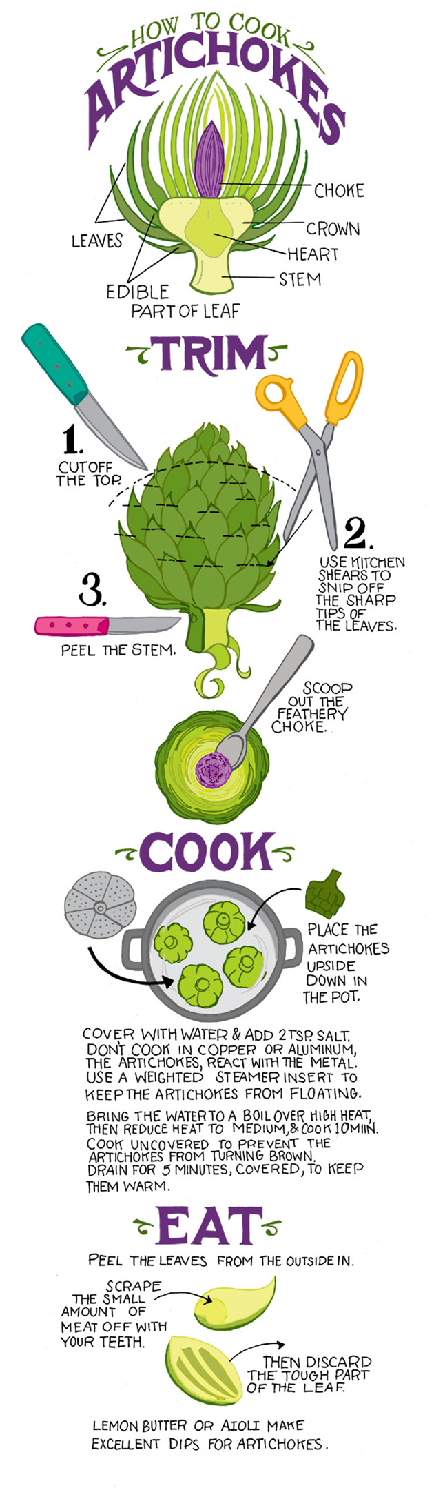 Tips To Cook Artichokes Infographic