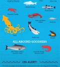 Tips How To Choose Seafoods Infographic