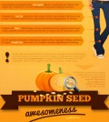 Pumpkin-Power-Infographic