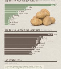 True Facts About Potato Infographic