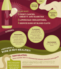 What Is Wine? Infographic
