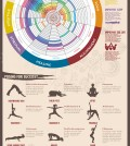 Yoga For Beginners Infographic