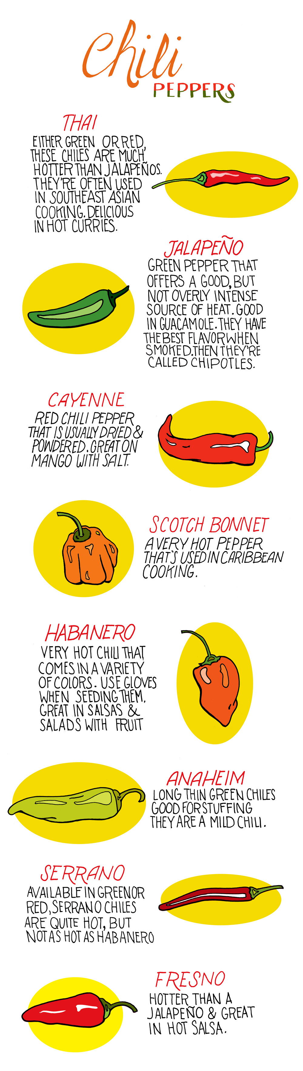 8 Types Of Chili Peppers Infographic