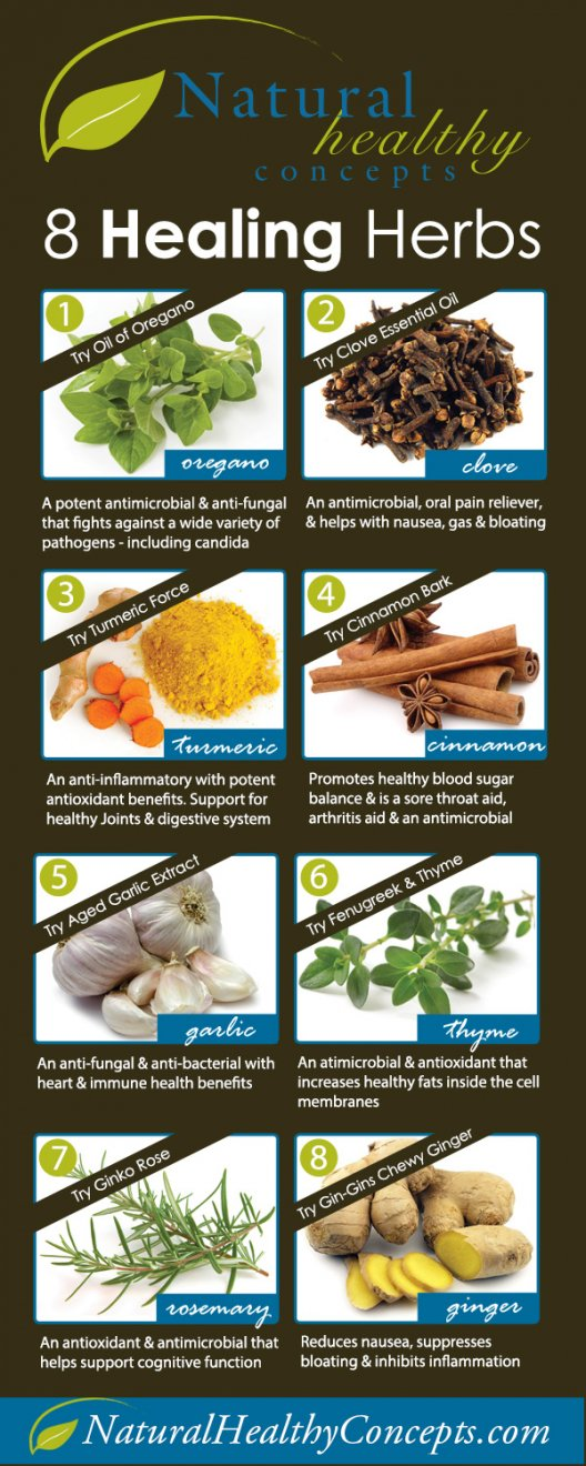 8 All-Healing Herbs Infographic