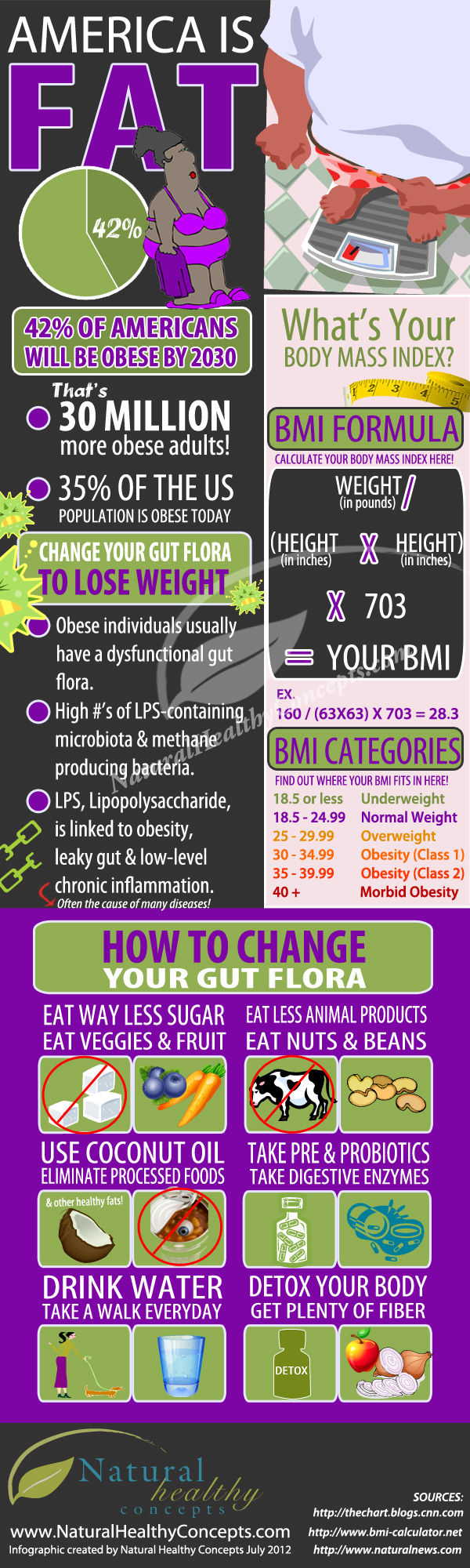 Is America Fat? Infographic