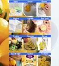 12 Secret Uses For A Lemon Infographic