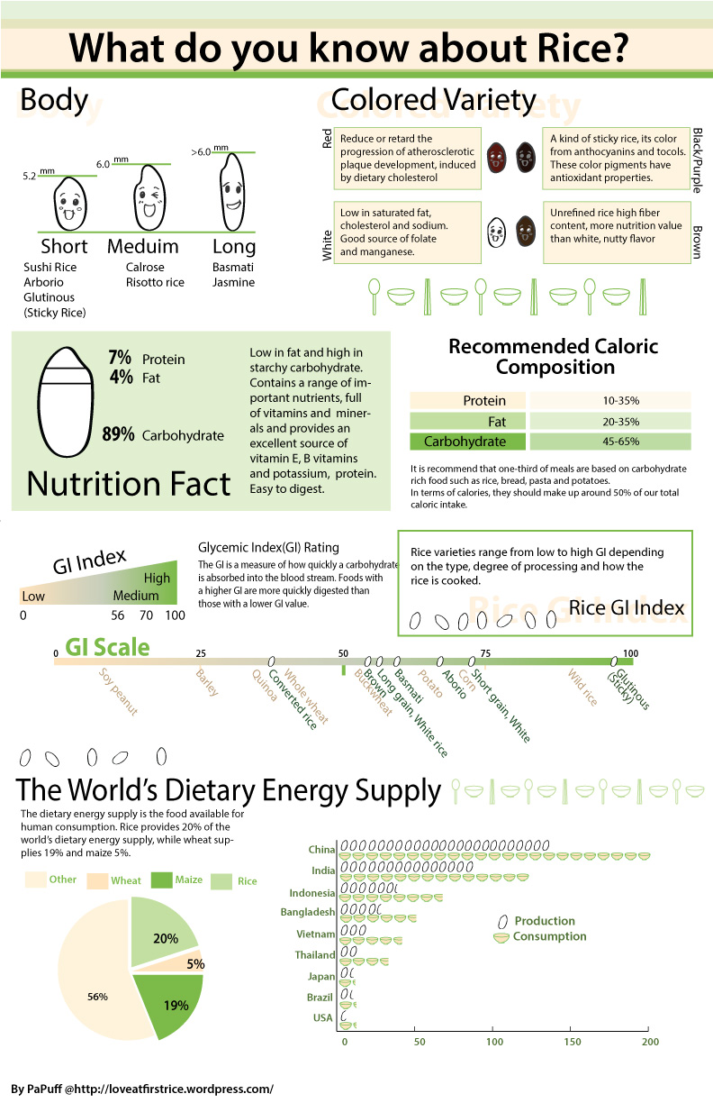 Everything About Rice Infographic