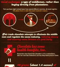 15 Facts about Chocolate Infographic