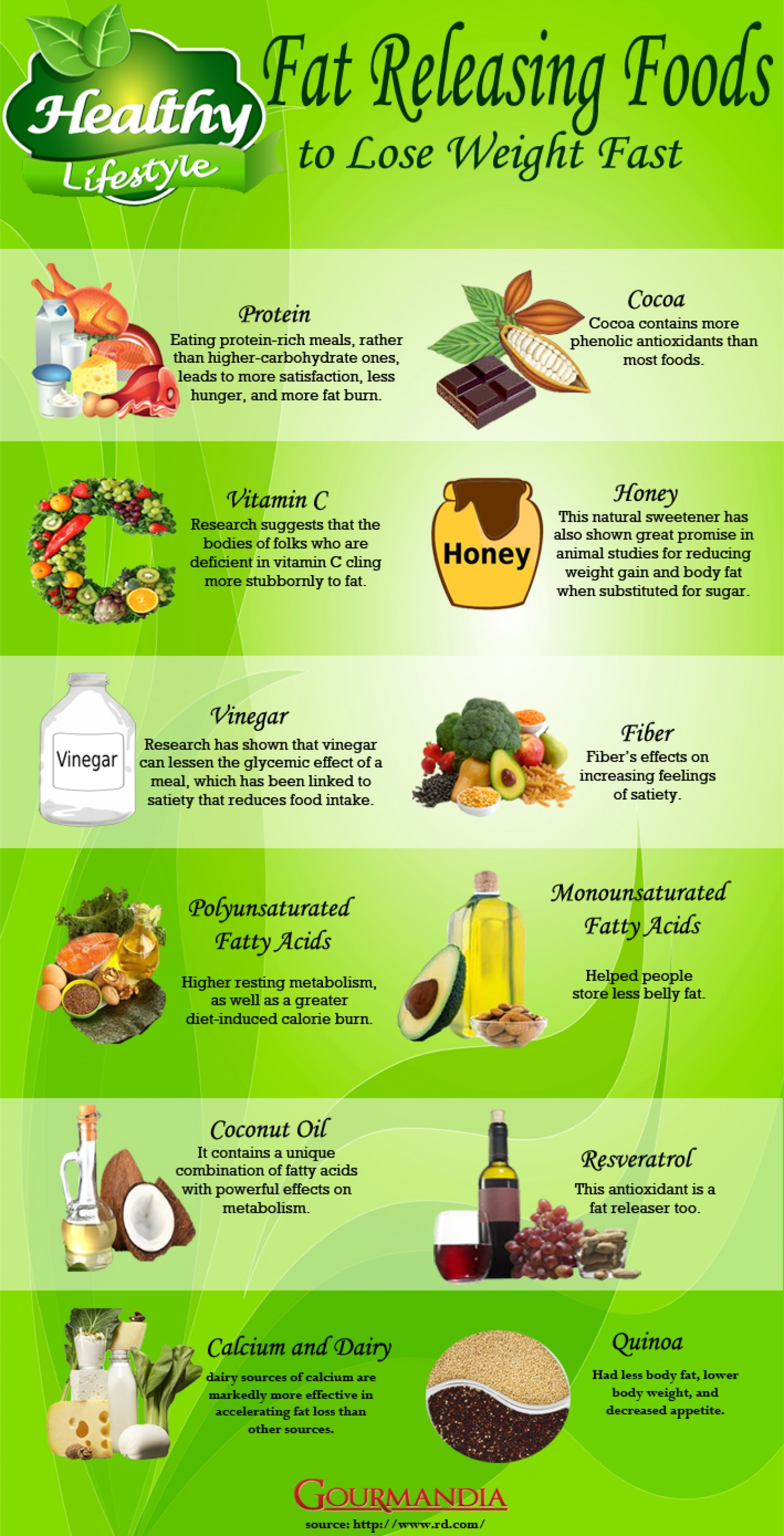 Foods To Lose Weight Fast Infographic