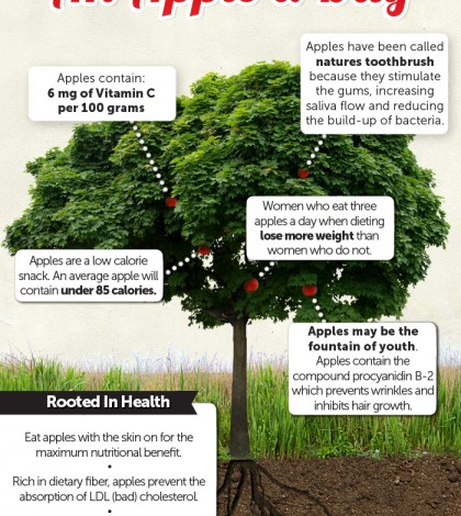 Surprising Apple Benefits Infographic