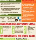 Everything About Food Labels Infographic