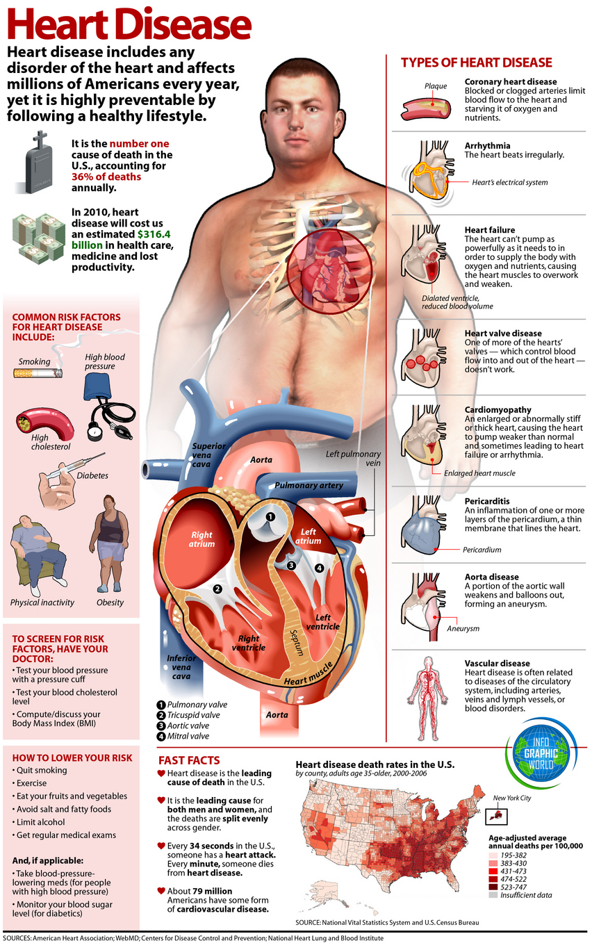 All About Heart Disease Infographic