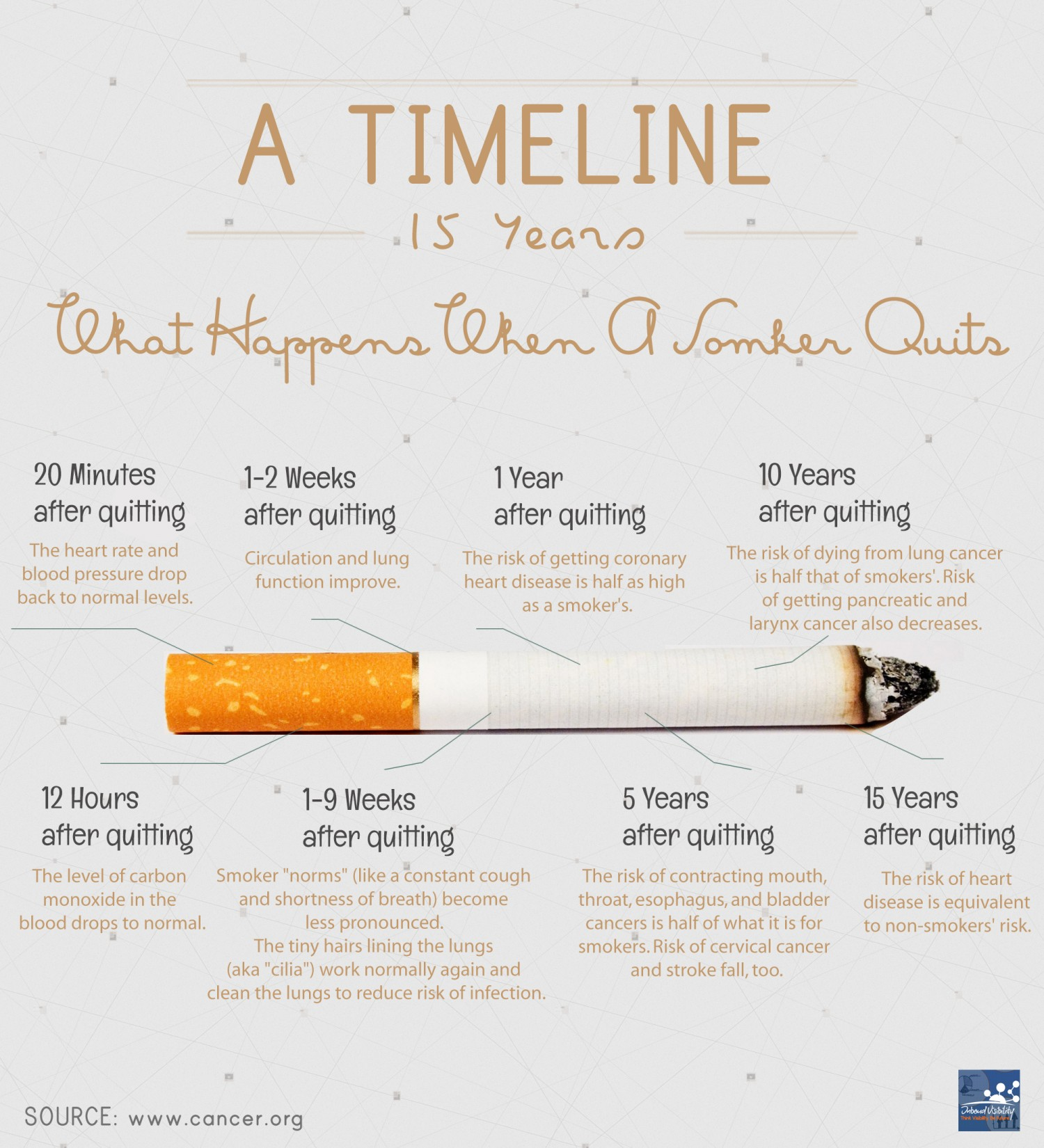 What Happens When You Stop Smoking Infographic