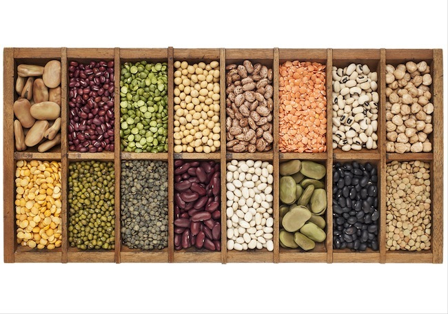 old wooden typesetter box with 16 samples of assorted legumes: green, red and French lentils