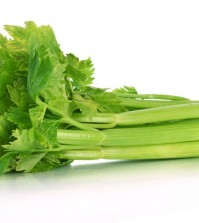 Fresh green celery isolated