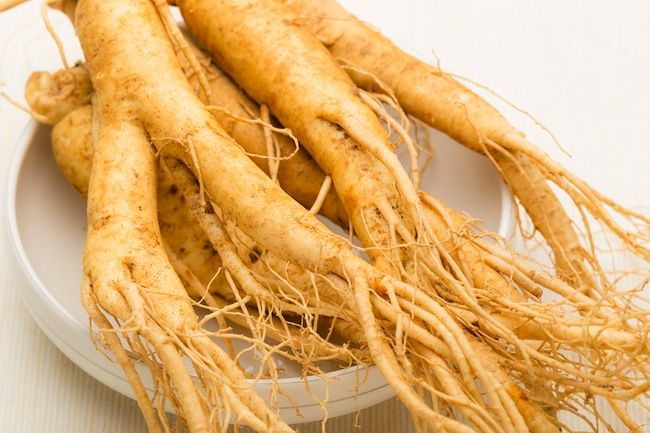 Fresh ginseng root