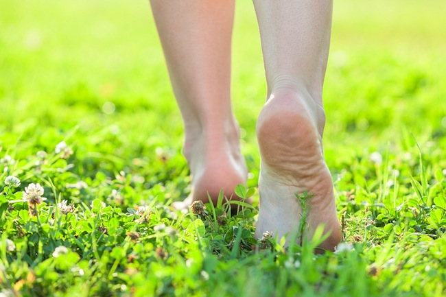 Light Step Barefoot