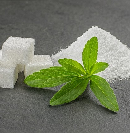Stevia leaves with stevia powder and sugar cubes on a slate plat