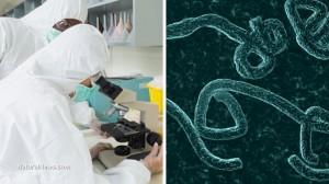 Lab-Scientists-Ebola-Virus-Microscope