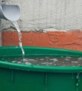 Rain-Barrel-Collect-Water