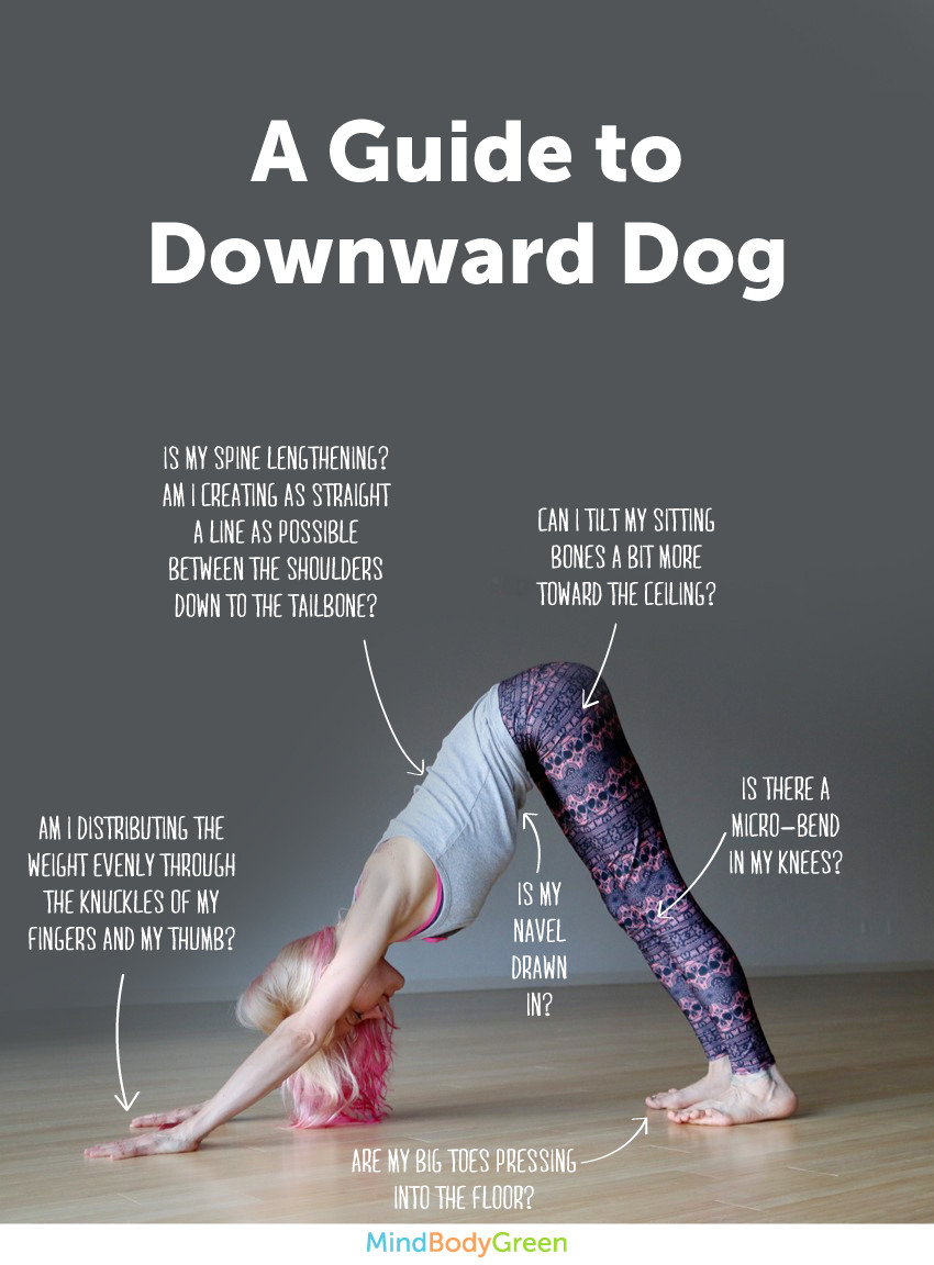 6 Steps To Downward Dog Infographic