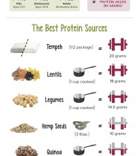 11 Plant-Based Protein Sources Infographic