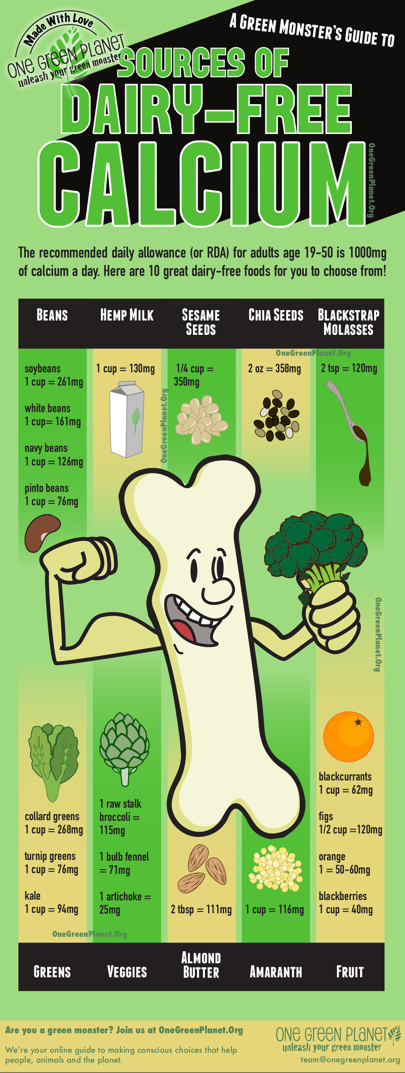10 Sources of Dairy-Free Calcium Infographic