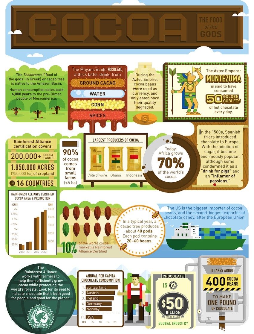 What Do You Know About Cocoa? Infographic