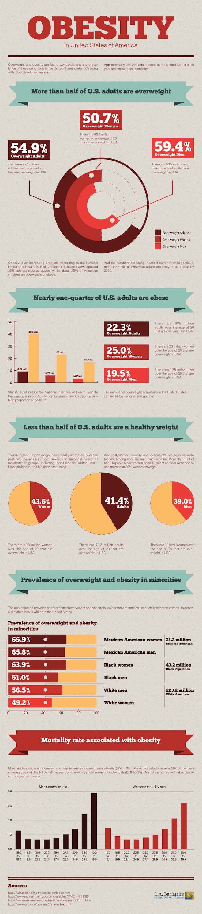 Obesity Attacks America Infographic