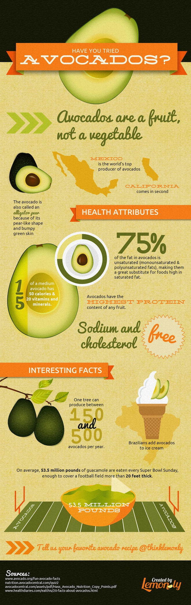 9 Facts About Avocados Infographic