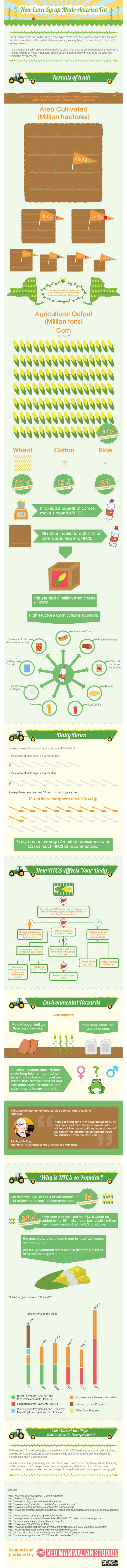 Corn Cyrup Makes You Fat Infographic