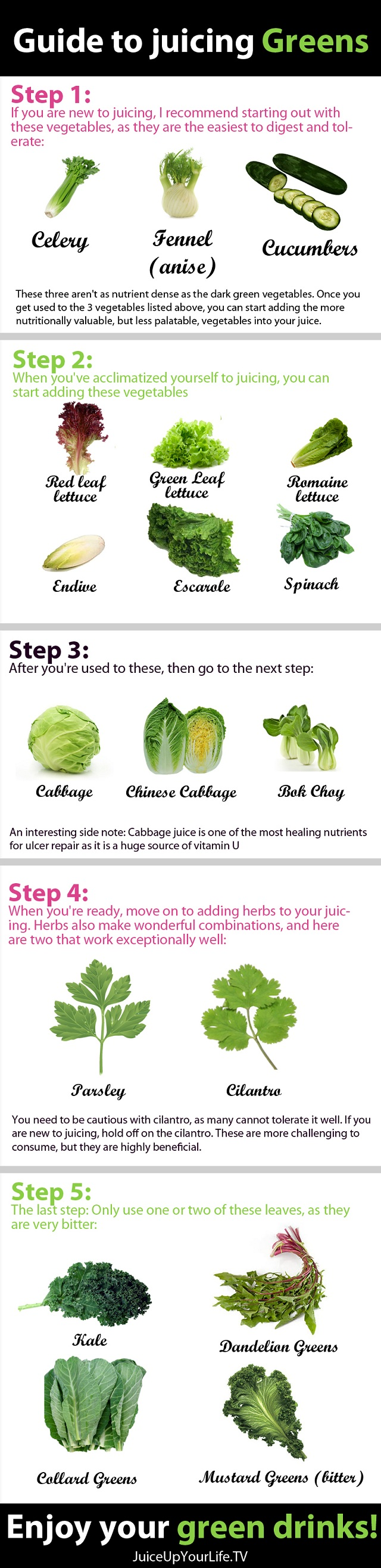 5 Steps To Green Juice Infographic