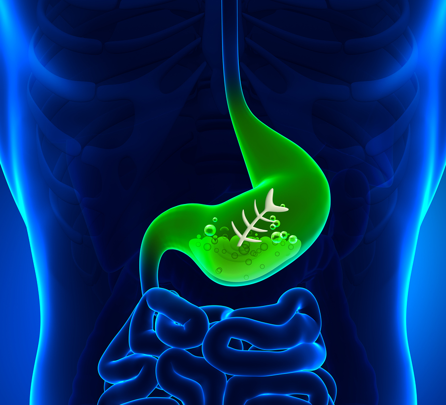 10 Most Surprising Facts About Your Digestive System