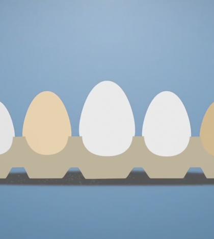 Eggs: Why We Should Eat Them And How To Choose The Best Ones Video