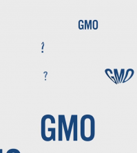 5 Serious Reasons To Label GMO Foods Video